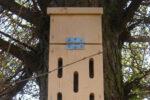 DIY sommerfuglehus i træ - byg et sommerhus til sommerfuglene