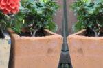 Små blomsterpotter i Papirbeton / fiberbeton