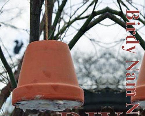 Hjemmelavet fuglefoder / DIY fuglekugler