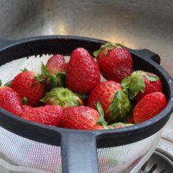 Hjemmelavet jordbær sorbet