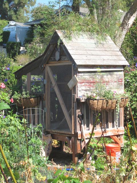 DIY Hønehus i landlige omgivelser