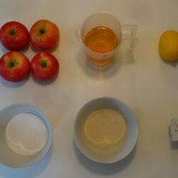 Hjemmelavet æble is sorbet, der skal ikke meget til